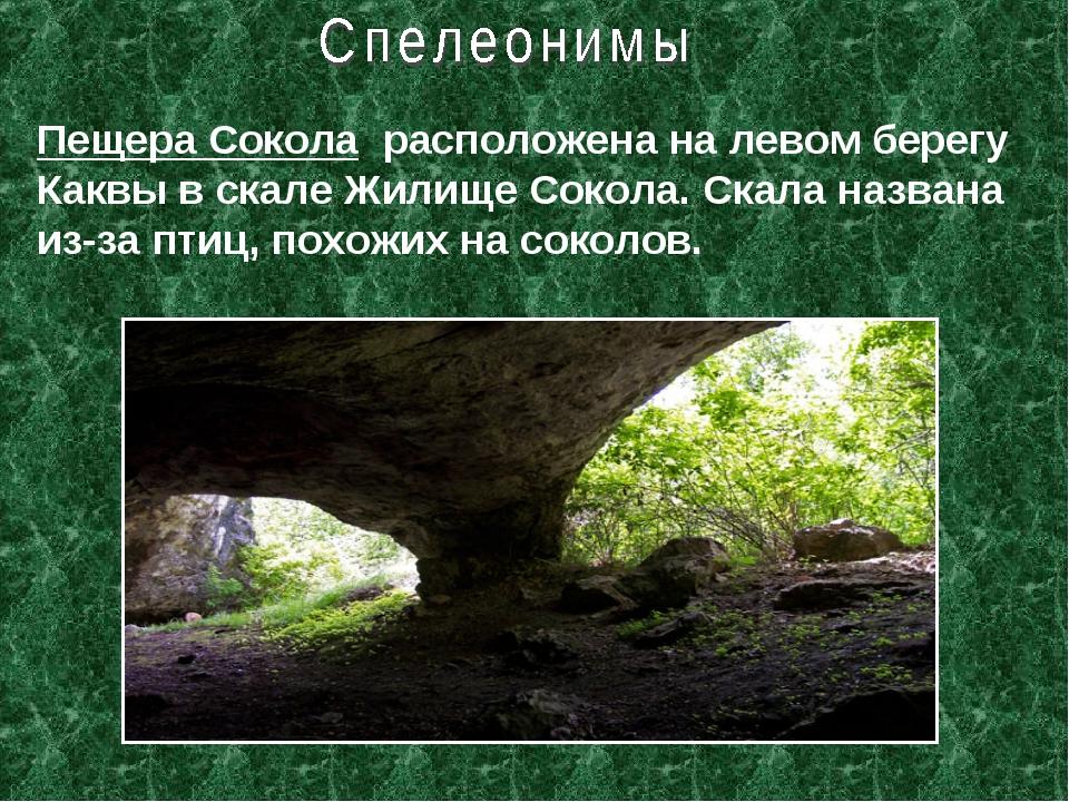 Пещера Сокола расположена на левом берегу Каквы в скале Жилище Сокола. Скала...