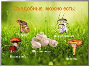 Съедобные, можно есть: Белые грибы Лисичка Подберёзовики Рыжики Шампиньоны