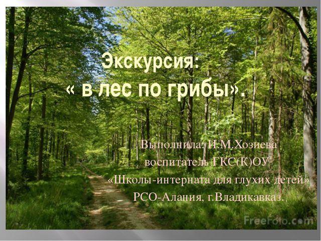 Экскурсия: « в лес по грибы». Выполнила: И.М.Хозиева воспитатель ГКС(К)ОУ «Шк...