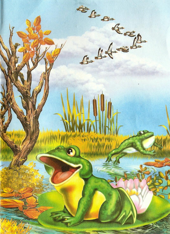 Лягушка путешественница открытка, все будет открытка