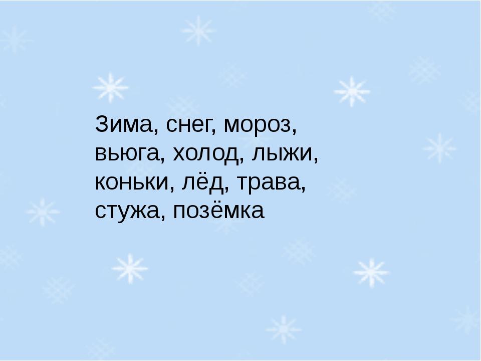 Зима, снег, мороз, вьюга, холод, лыжи, коньки, лёд, трава, стужа, позёмка