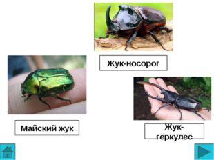 Использованные источники http://door-pro.com.ua/stat/wp-content/uploads/2014/