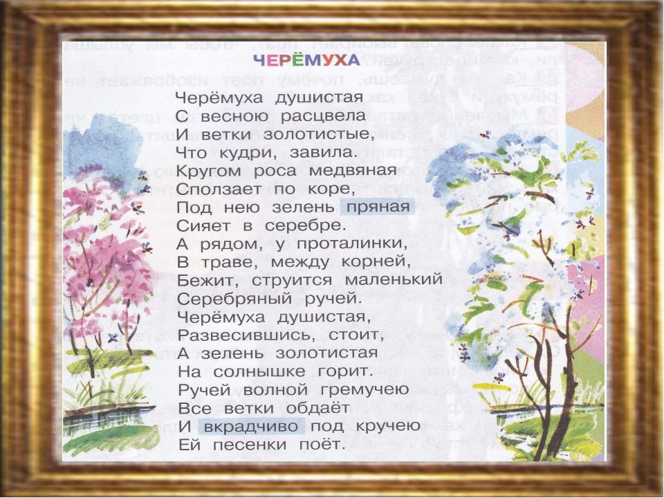 Картинки с черемухой с цитатами из стихотворению есенина черемуха, для