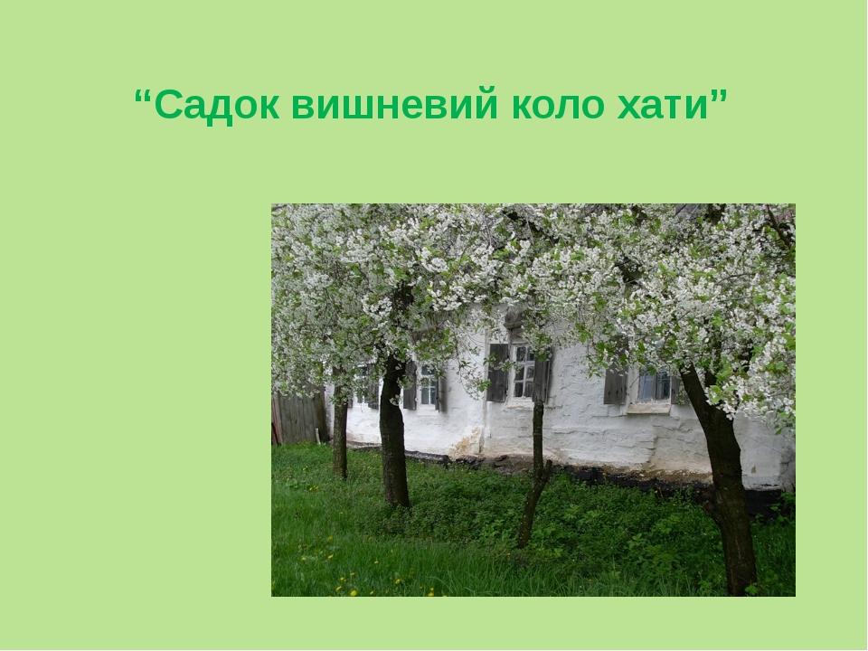 """""""Садок вишневий коло хати"""" Первинне читання вірша"""