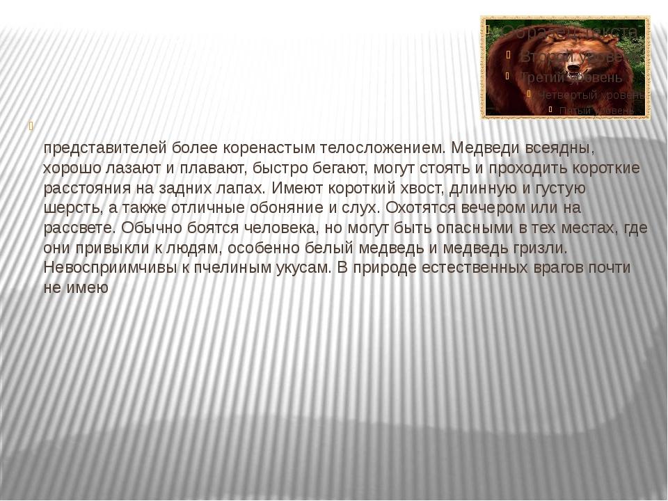 Медве́дь — крупное млекопитающее отряда хищных. Отличаются от других предста...