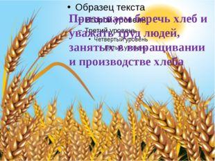 Призываем беречь хлеб и уважать труд людей, занятых в выращивании и производ