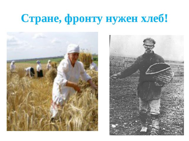 Стране, фронту нужен хлеб!