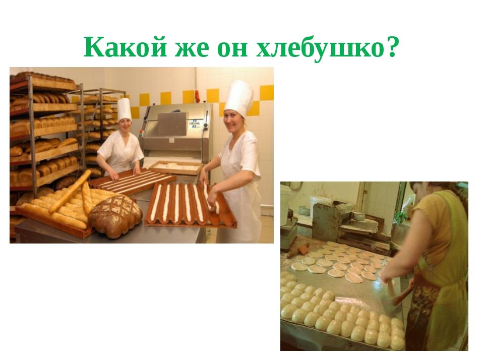Какой же он хлебушко?