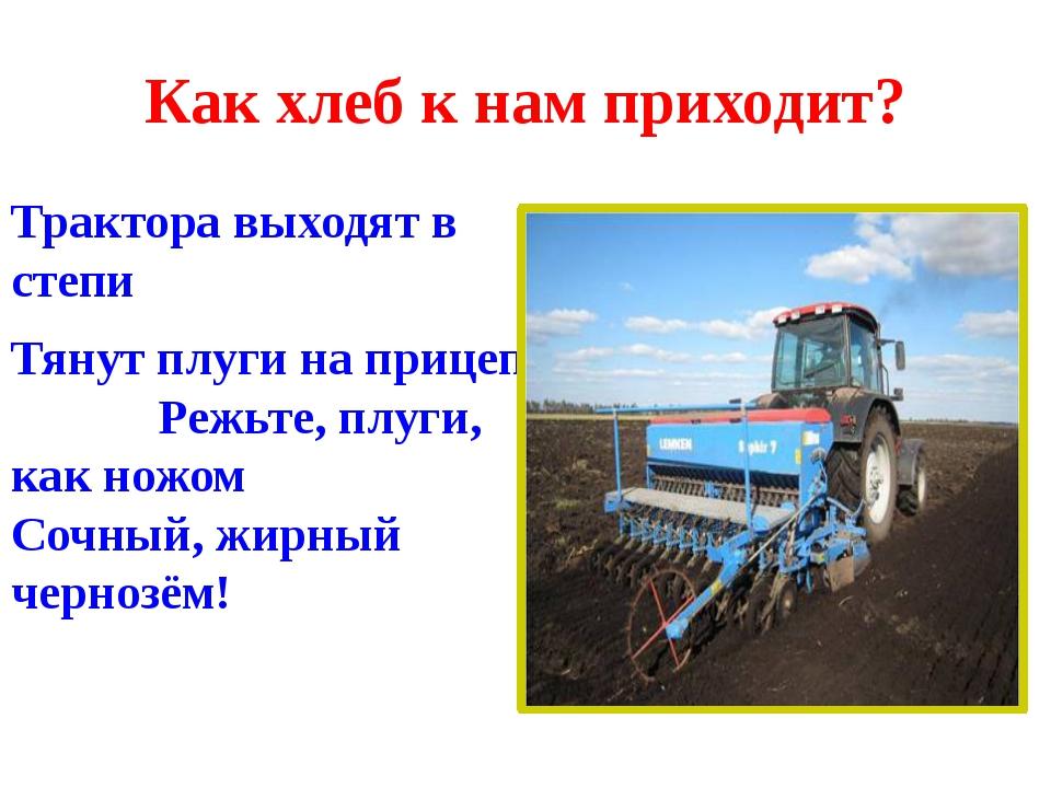 Как хлеб к нам приходит? Трактора выходят в степи Тянут плуги на прицепе Режь...