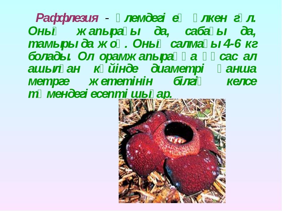 Раффлезия - әлемдегі ең үлкен гүл. Оның жапырағы да, сабағы да, тамыры да жо...