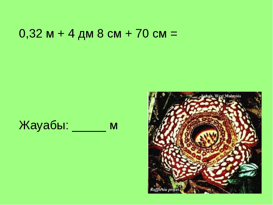 0,32 м + 4 дм 8 см + 70 см = Жауабы: _____ м