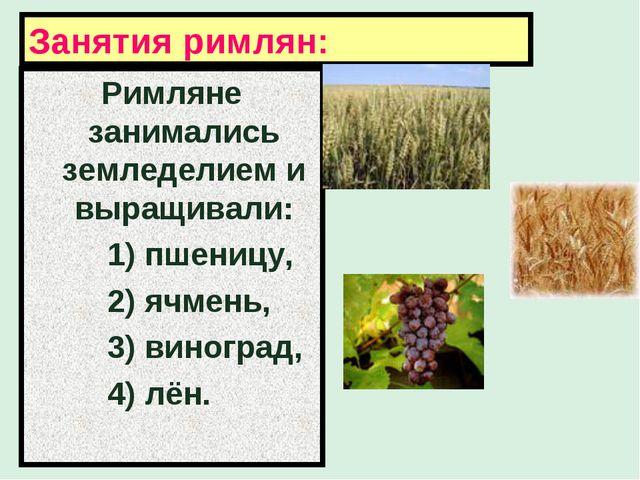 Занятия римлян: Римляне занимались земледелием и выращивали: 1) пшеницу, 2) я...