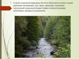 В целях сохранения природных богатств субтропиков человек создаёт различные з