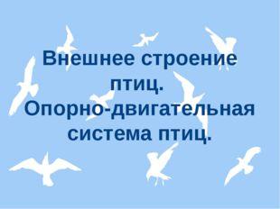 Внешнее строение птиц. Опорно-двигательная система птиц.