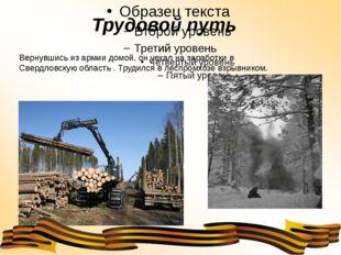 Трудовой путь Вернувшись из армии домой, он уехал на заработки в Свердловску