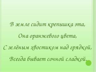 В земле сидит крепышка эта, Она оранжевого цвета, С зелёным хвостиком над гр