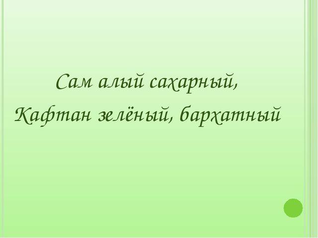 Сам алый сахарный, Кафтан зелёный, бархатный