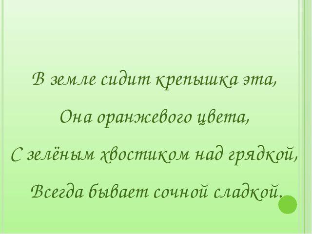 В земле сидит крепышка эта, Она оранжевого цвета, С зелёным хвостиком над гр...