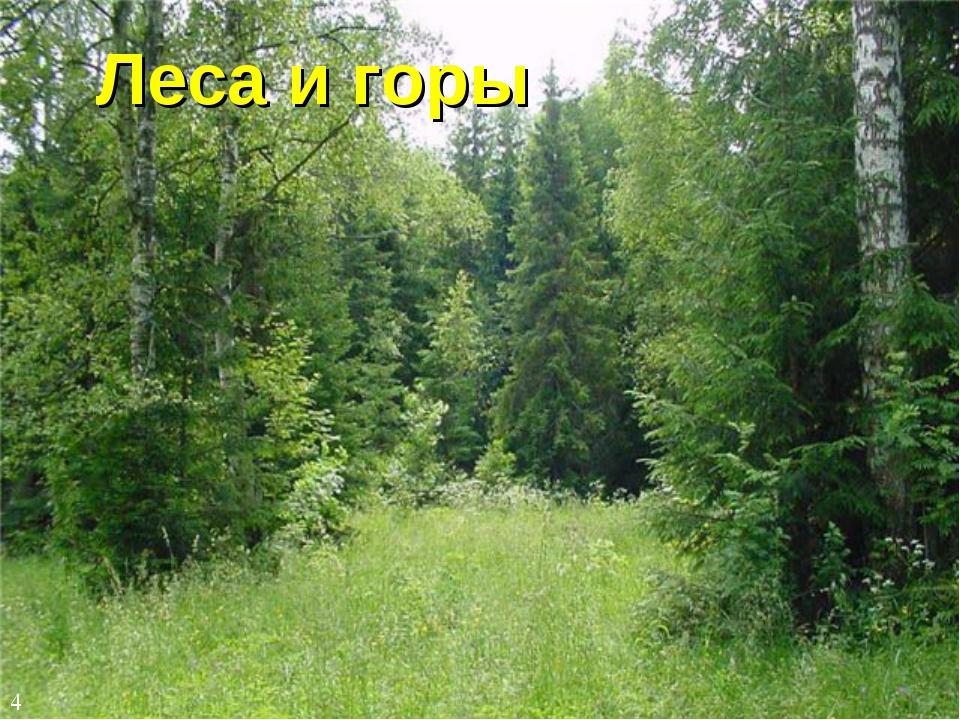 Леса и горы 4