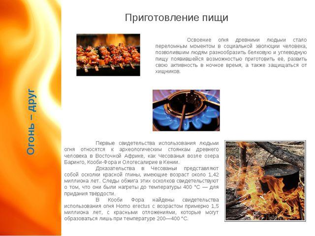 Огонь – друг Приготовление пищи Освоение огня древними людьми стало переломн...