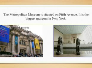 The Metropolitan Museum is situated on Fifth Avenue. It is the biggest museum