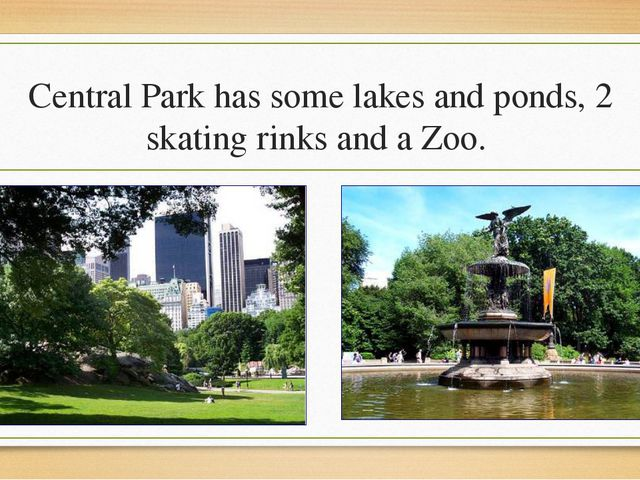 Central Park has some lakes and ponds, 2 skating rinks and a Zoo.