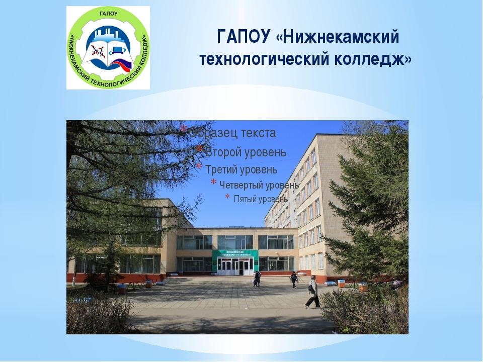 ГАПОУ «Нижнекамский технологический колледж»