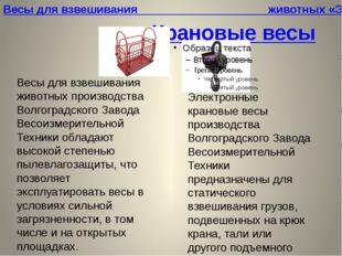 Крановые весы Электронные крановые весы производства Волгоградского Завода Ве