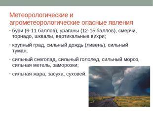 Метеорологические и агрометеорологические опасные явления бури (9-11 баллов),