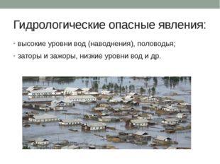Гидрологические опасные явления: высокие уровни вод (наводнения), половодья;