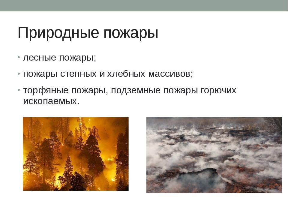 Природные пожары лесные пожары; пожары степных и хлебных массивов; торфяные п...