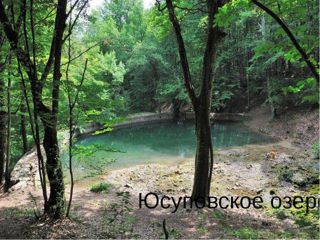 Юсуповское озеро