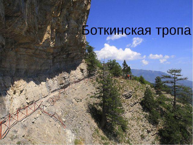 Боткинская тропа