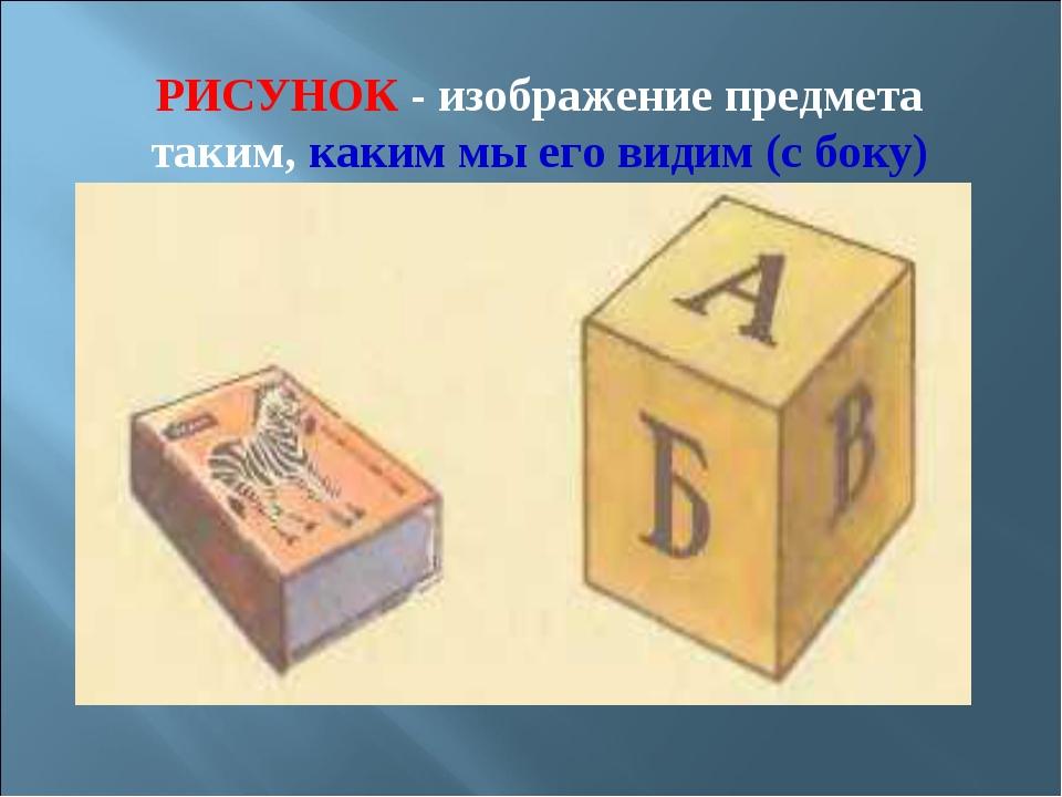 РИСУНОК - изображение предмета таким, каким мы его видим (с боку)