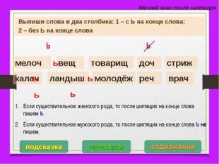 Мягкий знак после шипящих Выпиши слова в два столбика: 1 – с Ь на конце слова
