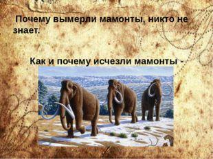 Почему вымерли мамонты, никто не знает. Как и почему исчезли мамонты - насто