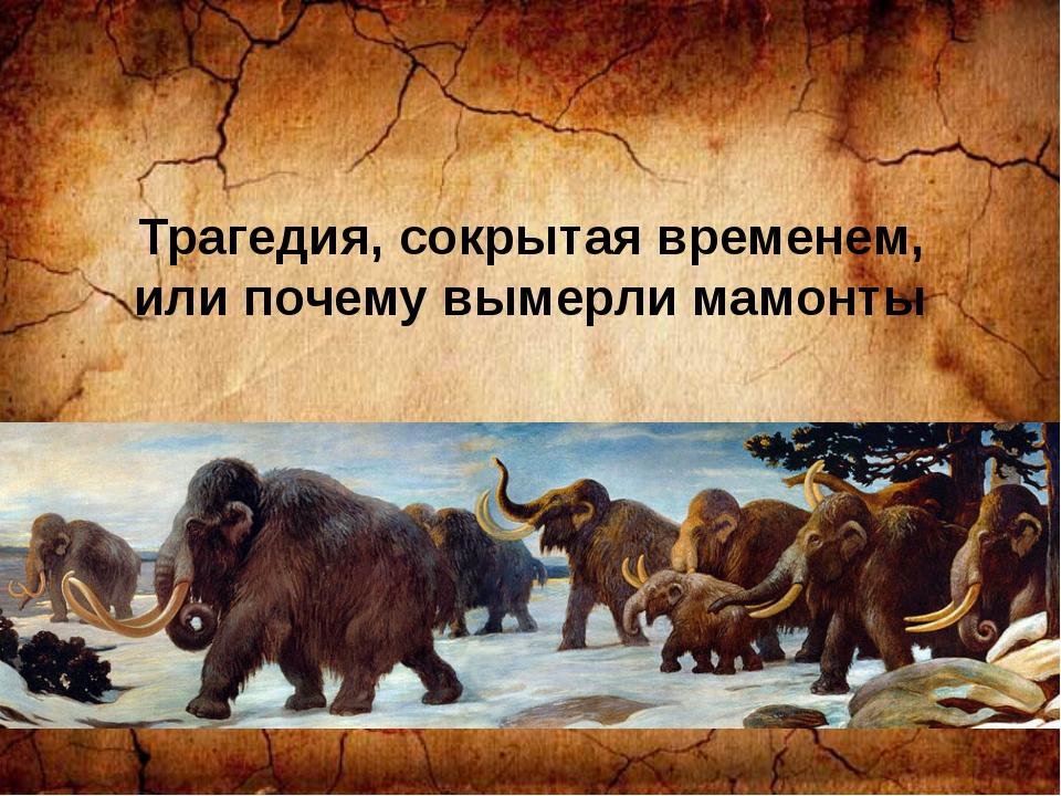 Трагедия, сокрытая временем, или почему вымерли мамонты