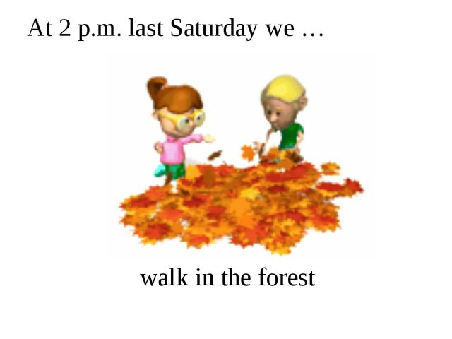 At 2 p.m. last Saturday we … walk in the forest
