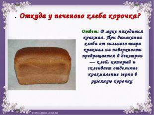 . Откуда у печеного хлеба корочка? Ответ: В муке находится крахмал. При выпек