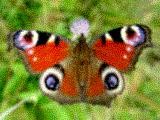 hello_html_2b9c6007.png
