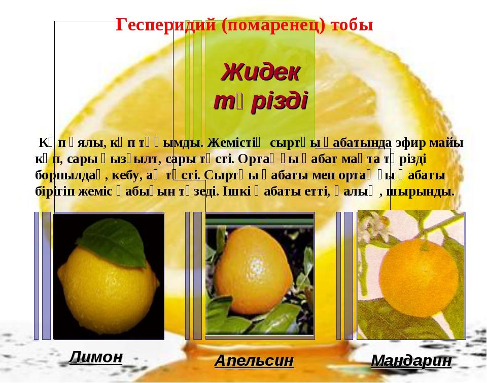 Лимон Апельсин Мандарин Гесперидий (помаренец) тобы Көп ұялы, көп тұқымды. Же...