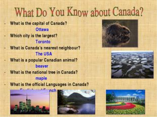 What is the capital of Canada? Ottawa  Which city is the largest? Toro