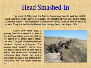 For over 10,000 years the Native Canadians people and the buffalo lived toge