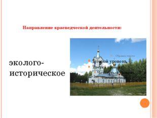 Направление краеведческой деятельности:     эколого-историческое