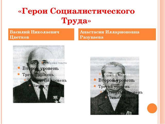 «Герои Социалистического Труда» Василий Николаевич Цветков