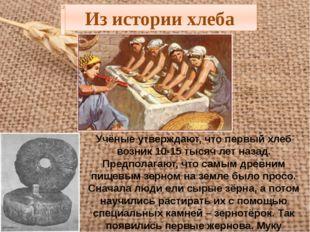 Из истории хлеба Учёные утверждают, что первый хлеб возник 10-15 тысяч лет на
