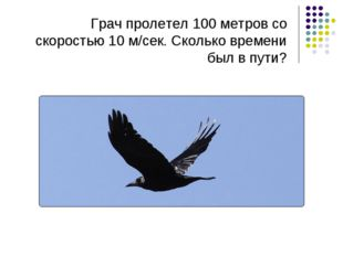Грач пролетел 100 метров со скоростью 10 м/сек. Сколько времени был в пути?