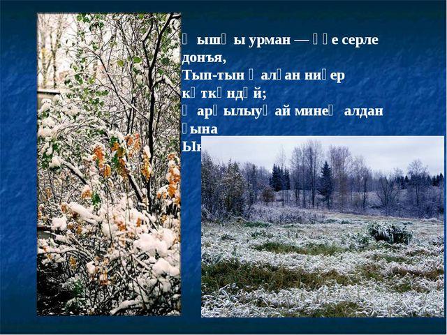 Ҡышҡы урман — үҙе серле донъя, Тып-тын ҡалған ниҙер көткәндәй; Ҡарһылыуҡай ми...
