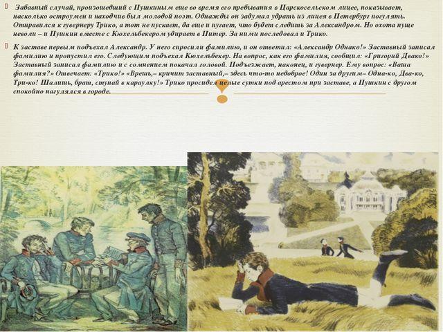 Забавный случай, произошедший с Пушкиным еще во время его пребывания в Царск...