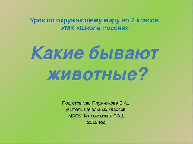 Подготовила: Плужникова Е.А., учитель начальных классов МБОУ Мальчевская СОШ...